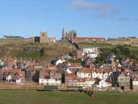 White Horses - Whitby & North Yorkshire - 958164 - thumbnail photo 12