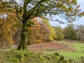 Rowan - Woodland Cottages - Lake District - 958713 - thumbnail photo 21