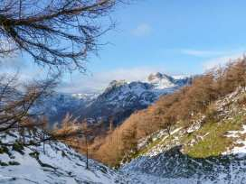 Rowan - Woodland Cottages - Lake District - 958713 - thumbnail photo 22