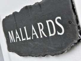 Mallards - Cornwall - 960397 - thumbnail photo 2