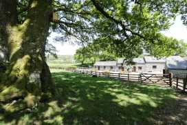 Ysgubor Cottage - North Wales - 960415 - thumbnail photo 15