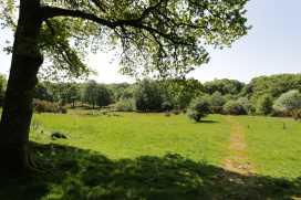 Bonnyn Derw Cottage - North Wales - 960420 - thumbnail photo 15