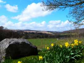 Rose Cottage - Yorkshire Dales - 960885 - thumbnail photo 12