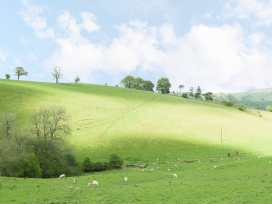 Rolling Hills - Shropshire - 961166 - thumbnail photo 12