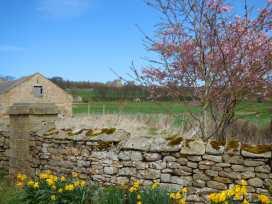 Corner Cottage - Yorkshire Dales - 962780 - thumbnail photo 16