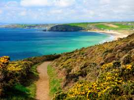The Little Place - Cornwall - 962948 - thumbnail photo 19