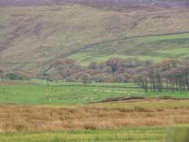 Tewitt Cottage - Lake District - 963334 - thumbnail photo 19