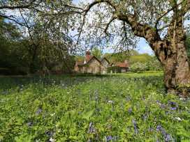 Keepers Cottage - Kent & Sussex - 963605 - thumbnail photo 50