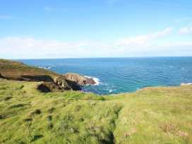 Blue Reef Cottage - Cornwall - 964204 - thumbnail photo 25