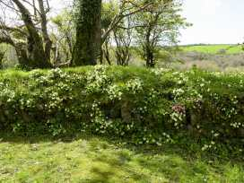 Old Mill Cottage - Cornwall - 964223 - thumbnail photo 19