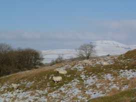 Doe Foot Cottage - Yorkshire Dales - 964557 - thumbnail photo 15