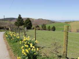 Y Daflod - Mid Wales - 965381 - thumbnail photo 3