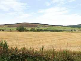 Ingram - Northumberland - 966414 - thumbnail photo 13