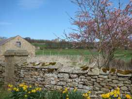 Barn Cottage - Yorkshire Dales - 966542 - thumbnail photo 23