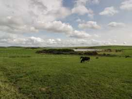 3 Kirminnoch Cottages - Scottish Lowlands - 966572 - thumbnail photo 10