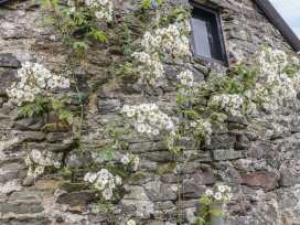 Hunstone Barn - Devon - 966642 - thumbnail photo 19