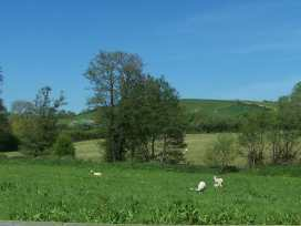 West Perry Hay - Dorset - 967245 - thumbnail photo 11