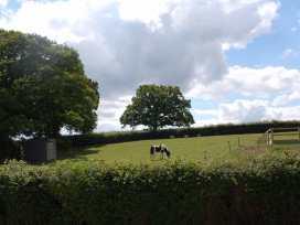 The Furrow - Devon - 967281 - thumbnail photo 10