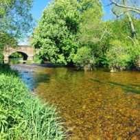 Robin Cottage - Devon - 967311 - thumbnail photo 9