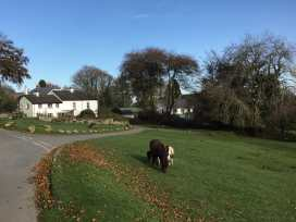 1 Church Cottages - Devon - 968469 - thumbnail photo 19