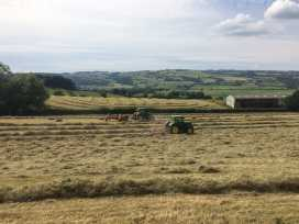 Shepherd's View - Shropshire - 968475 - thumbnail photo 29