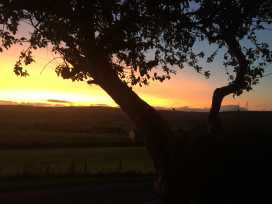 Shepherd's View - Shropshire - 968475 - thumbnail photo 30