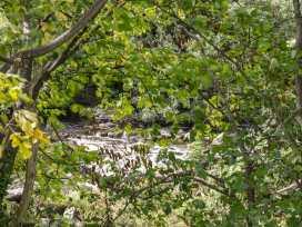 The Talant - Mid Wales - 970797 - thumbnail photo 27