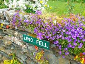 Ling Fell Cottage - Lake District - 971558 - thumbnail photo 2