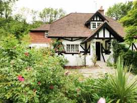 Gibbys Cottage - Kent & Sussex - 971740 - thumbnail photo 16