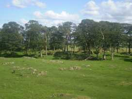 Jocks Cottage - Scottish Lowlands - 972510 - thumbnail photo 15