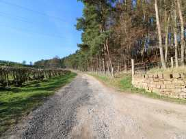 Pheasant Cottage - Lake District - 972529 - thumbnail photo 34