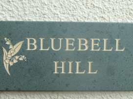 Bluebell Hill - Lake District - 972559 - thumbnail photo 8