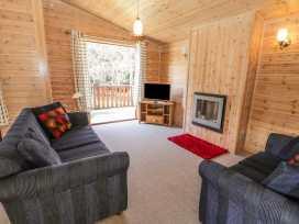 Ash Lodge - Willow - Lake District - 973056 - thumbnail photo 3