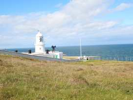 Azalea - Cornwall - 973266 - thumbnail photo 39