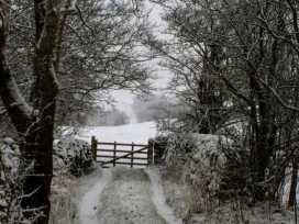 Croft Cottage - Yorkshire Dales - 973753 - thumbnail photo 18