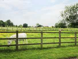 The Old Stables - Cotswolds - 974313 - thumbnail photo 19