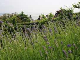 1 Corner Cottages - Lake District - 975187 - thumbnail photo 20