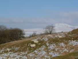 Chandlers Cottage - Yorkshire Dales - 975310 - thumbnail photo 14