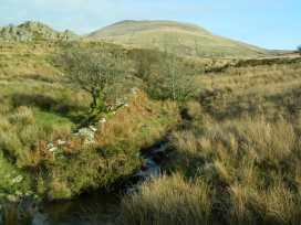 Cae'r Fadog Isaf Farmhouse - North Wales - 975393 - thumbnail photo 13