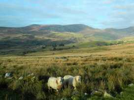 Cae'r Fadog Isaf Farmhouse - North Wales - 975393 - thumbnail photo 14