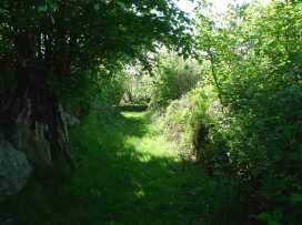 Hay Tor Cottage - Devon - 975822 - thumbnail photo 16