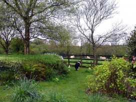 Burham Barn - Devon - 975830 - thumbnail photo 17