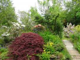 Moorside Cottage - Devon - 975835 - thumbnail photo 21