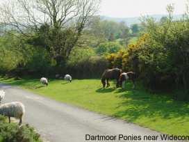 Moorside Cottage - Devon - 975835 - thumbnail photo 26