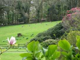 Pigwigs Place - Devon - 975852 - thumbnail photo 15
