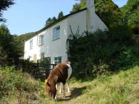 Barn Cottage - Devon - 975955 - thumbnail photo 25