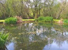 Lower Cowley Farmhouse - Devon - 975958 - thumbnail photo 42