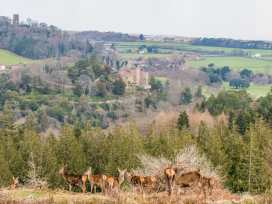 Castle View - Somerset & Wiltshire - 975960 - thumbnail photo 23