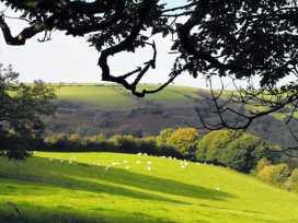 Heale Farm Cottage - Devon - 975971 - thumbnail photo 15