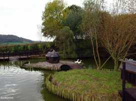 Hiscox Cottage - Devon - 976020 - thumbnail photo 19
